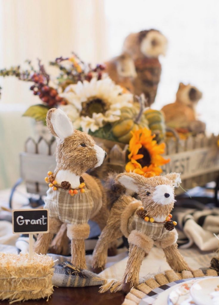 Thanksgiving Kids Table - Woodland Creature Theme - Deer Closeup