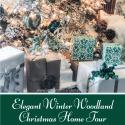 Elegant Winter Woodland Christmas Home Tour