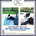 One Room Challenge Spring 2020 – Week 3 & Week 4: Operation Outdoor Oasis Refresh – Space Prep & Truman Approved