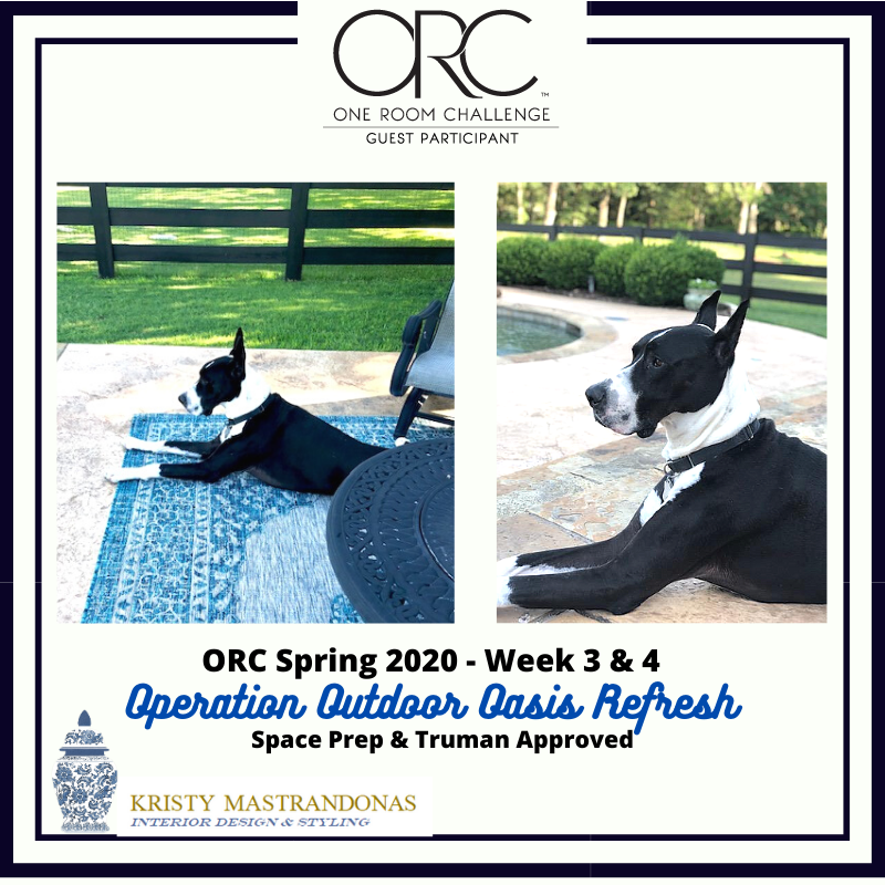 KRISTY-MASTRANDONAS-INTERIOR-DESIGN-STYLING-FLOWER-MOUND-TX-ORC-SPRING-2020-WEEK-3-4-OPERATION-OUTDOOR-OASIS-REFRESH-Space-Prep-Truman-Approved